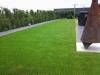 0718_Bilder_Kunstrasen_im_Garten