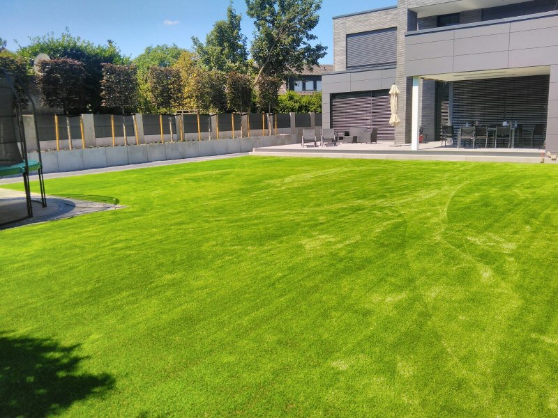 Kunstrasen im Garten (1)