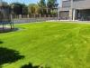 Kunstrasen im Garten (7)