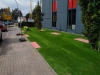 Kunstrasen vor Moebelhaus (1)