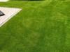 Kunstrasen_Premium_Line_40mm_Privatgarten (7)