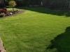 Kunstrasen_Premium_Line_Garten (2)