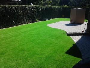Mit dem richtigen Dünger sieht der Rasen saftig grün aus und wächst schön dicht